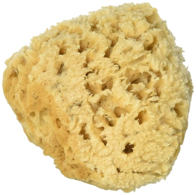 Spa Destinations Sea Wool Sponge