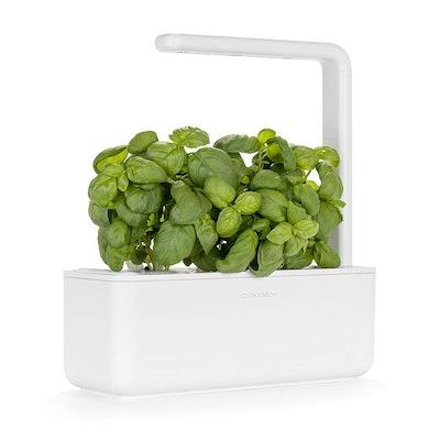 Click & Grow Herb Garden