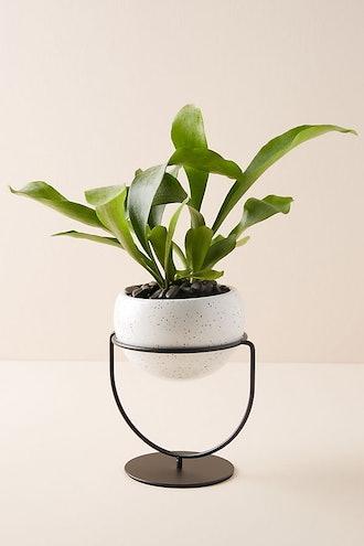 Speckled Ceramic Table Planter