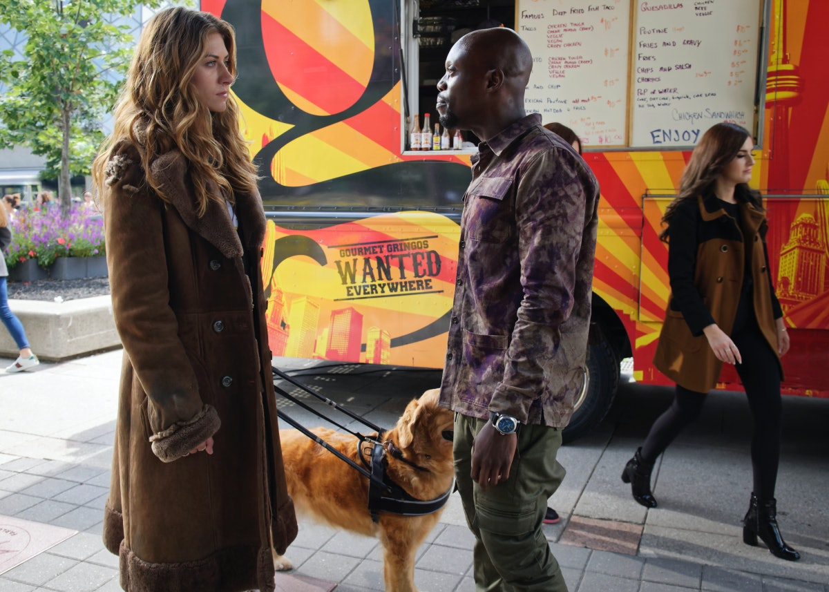 Is 'In The Dark' Based On A True Story? The Show Revolves Around A Blind Lead & Her Guide Dog Named Pretzel