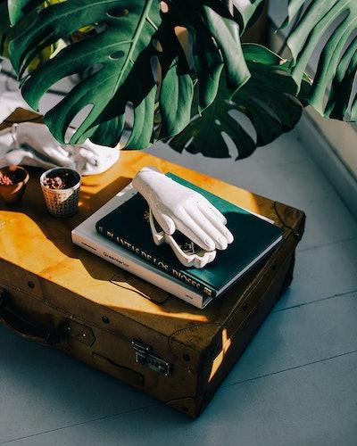 """""""Organs"""" Box"""