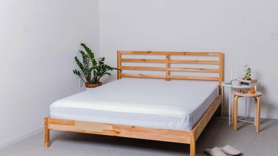 1f2ac2eec1 The 3 Best Mattress Covers For Bed Bugs
