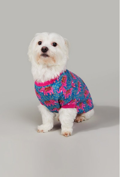 Royal Elephant Stretch Lounge Dog PJ