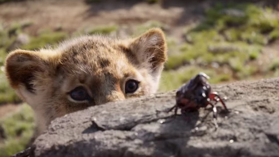 The Lion Kings First Full Trailer Provides A Vivid Peek At Simba
