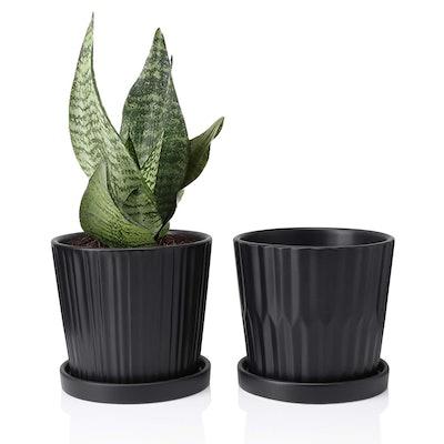 Greenaholics Medium Plant Pots, 6 Inch (2-Pack)