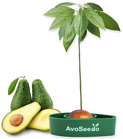 AvoSeedo Avocado Bowl