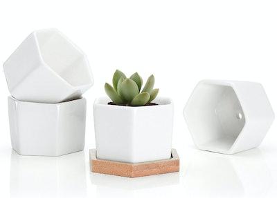 Greenaholics Succulent Plant Pots, 2.76 Inch (4-Pack)