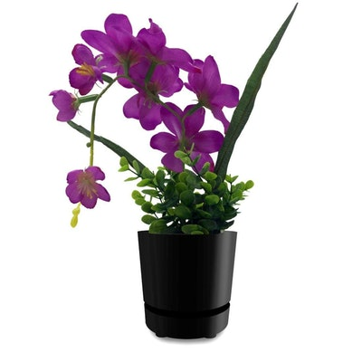 Self-Watering Pot, 6 Inches