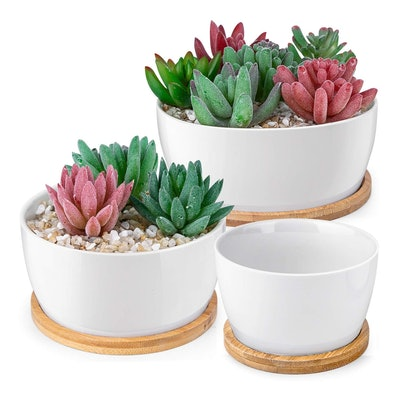 Homenote White Pots With Drainage Bamboo Trays, 3.8, 5, and 6 inches