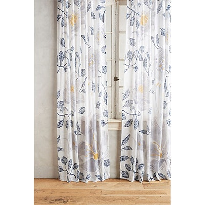 Catamarca Curtain