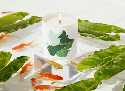 Canopy Candle