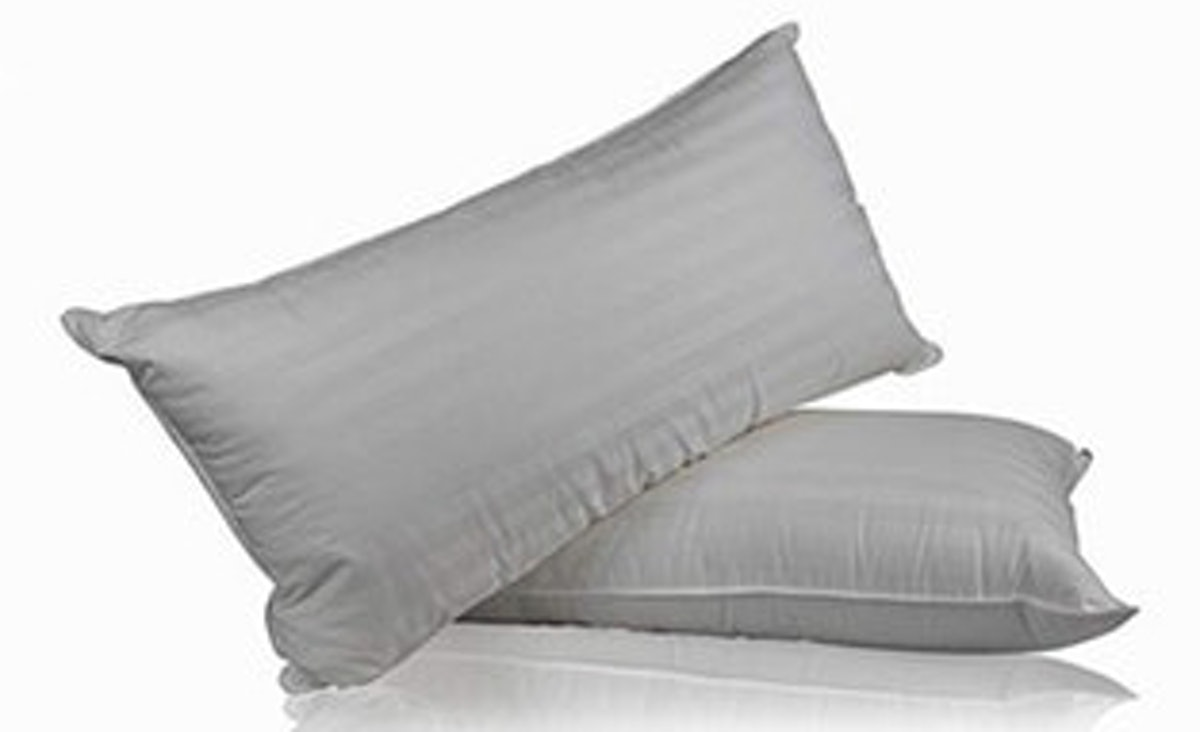 Continental Bedding Hungarian White Goose Down Pillows (Set of 2)