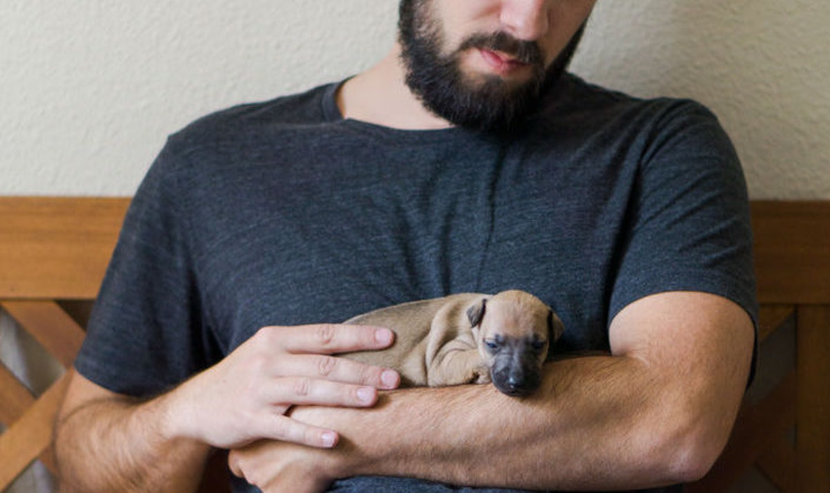 Beards Have More Germs Than Dogs, According To This Admittedly Quite Gross Study
