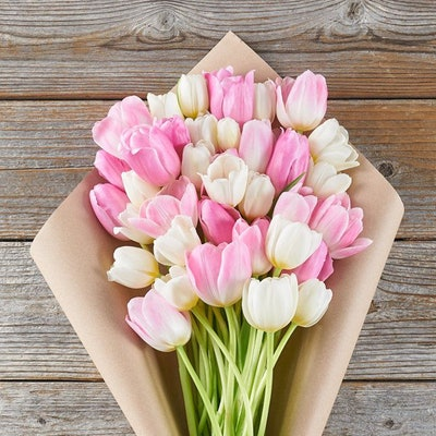 Luxe Pink & White Tulips
