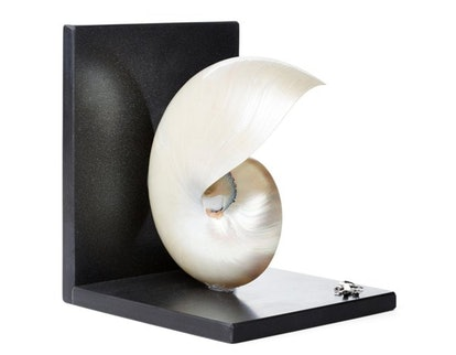 Nautilus Shell & Sterling-Silver Bookend