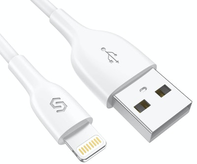 Syncwire iPhone Charger Lightning Cable, 3.3 Feet