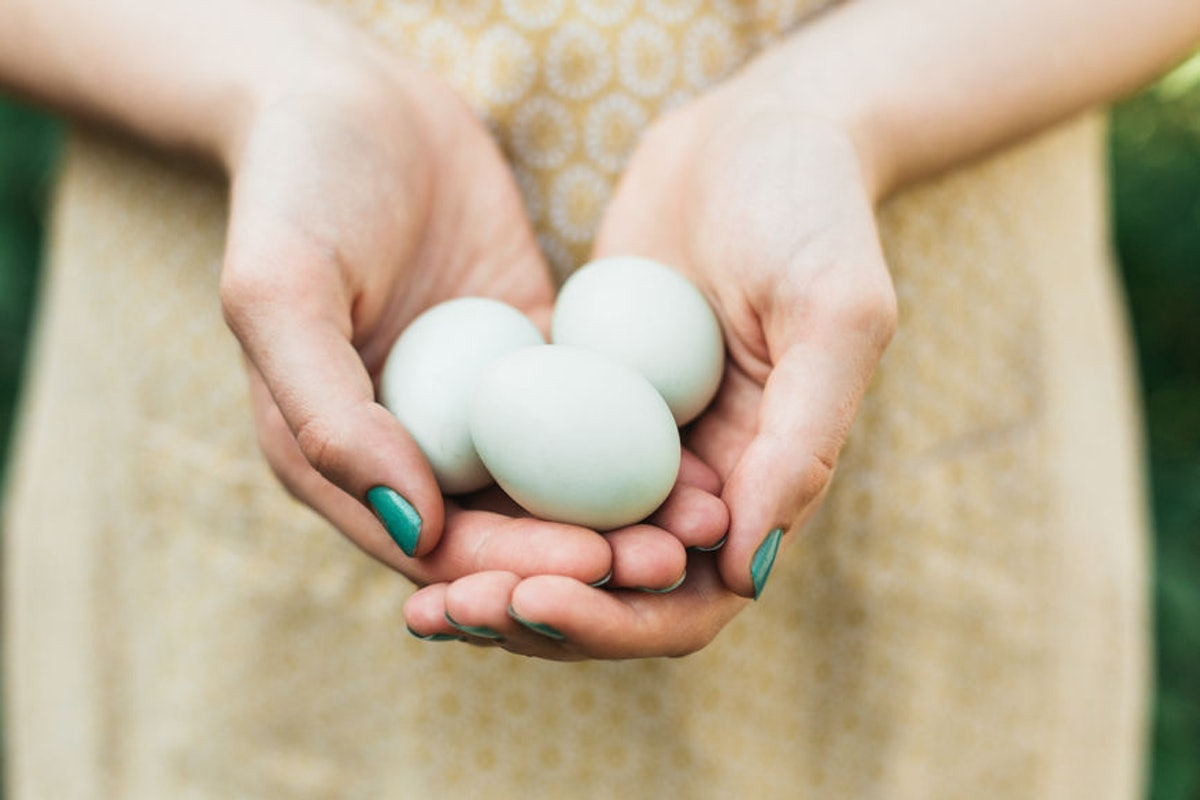 Is Egg Good For Your Skin? It's Debatable, But May Well Be Worth A Try