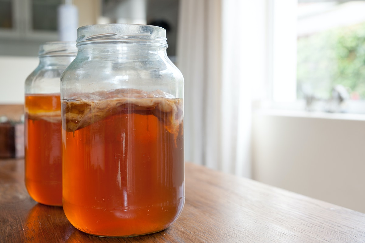 Is Kombucha Environmentally Friendly? Here's The Real Tea