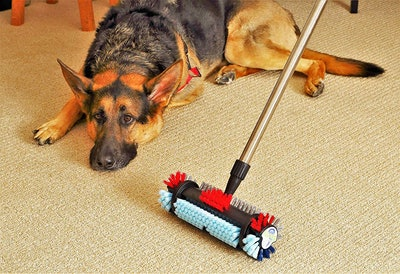 The Spotty Carpet and Tile Cleaning Brush