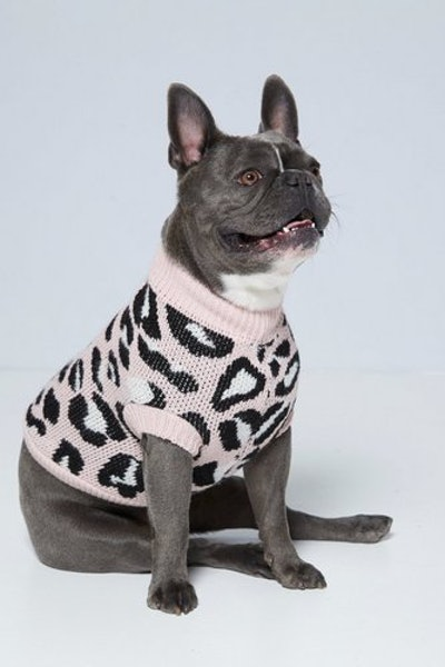 Pink Leopard Print Dog Jumper