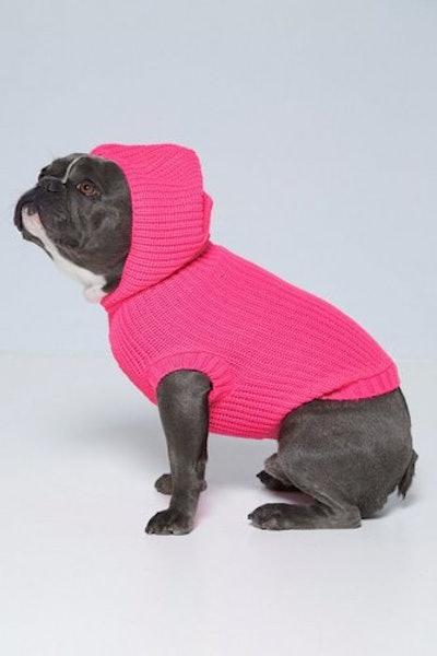 Neon Pink Hoody Dog Jumper