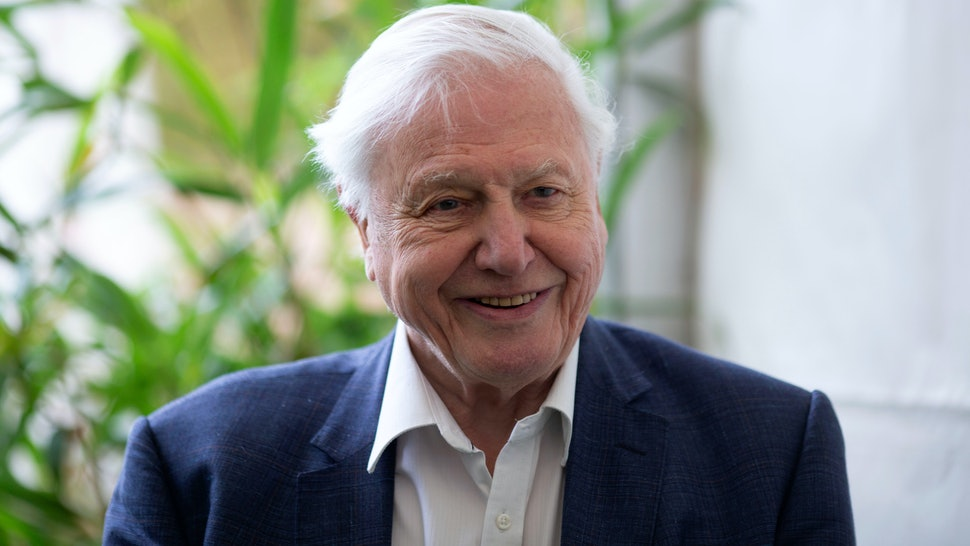 David Attenborough Kuollut