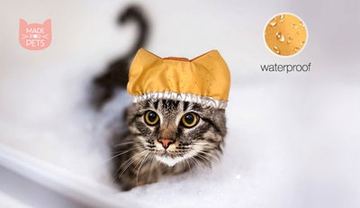 Shower Cap For Cat