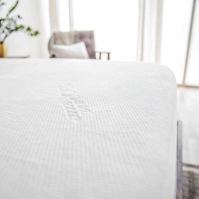 Coop Home Goods Mattress Cover