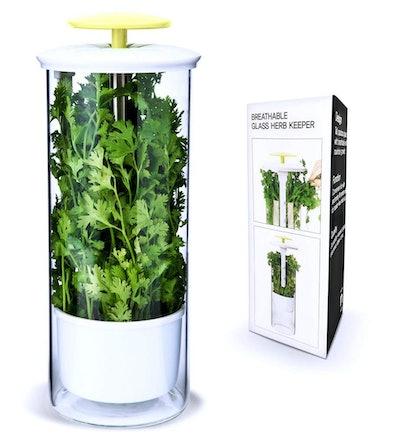 NOVART Premium Herb Keeper