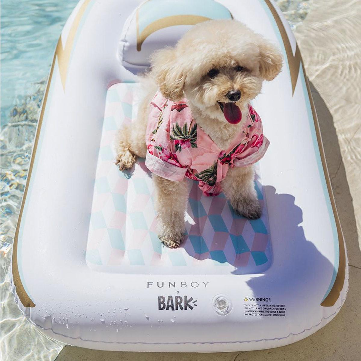 Yacht Dog Float