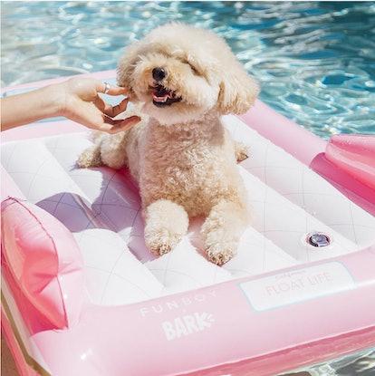 Convertible Dog Float