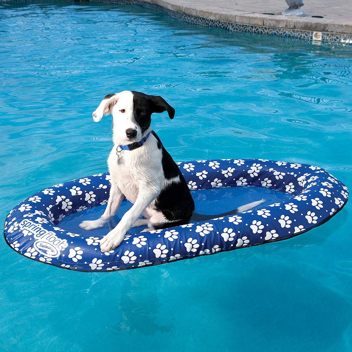 SwimWays Spring Float Paddle Paws Dog Pool Float