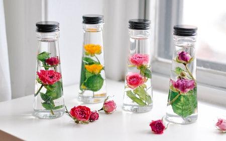 Study Of Roses Petite Herbarium