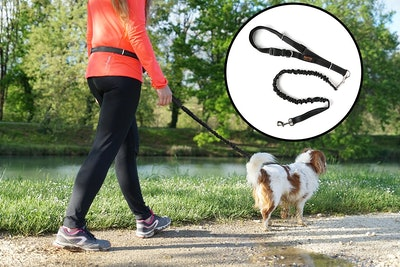 Mighty Paw Hands-Free Dog Leash
