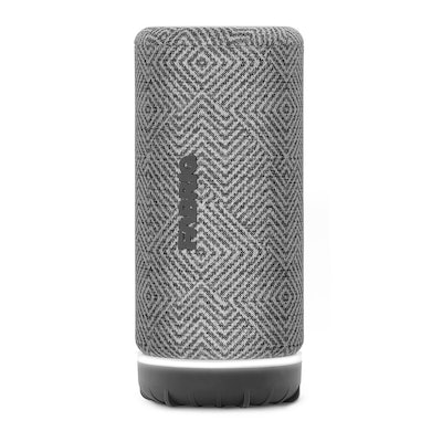 Voice Activated Wireless Speaker