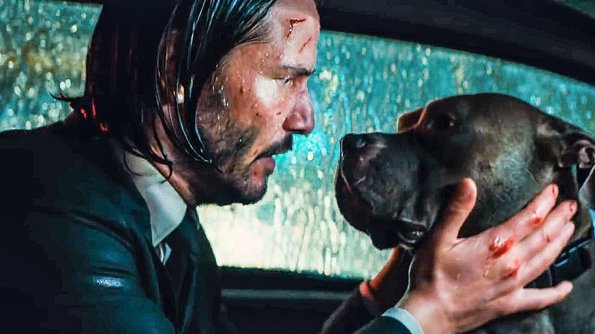 The Dogs In 'John Wick: Chapter 3' Had A Special Working Relationship With Star Halle Berry