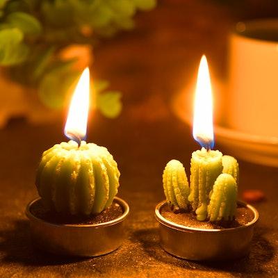 TechUnite Cactus Tea Light Candles (Set of 12)