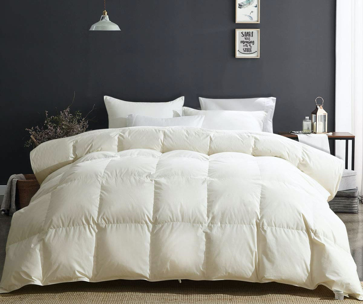 ApSmile Luxury 100% Organic Cotton Comforter