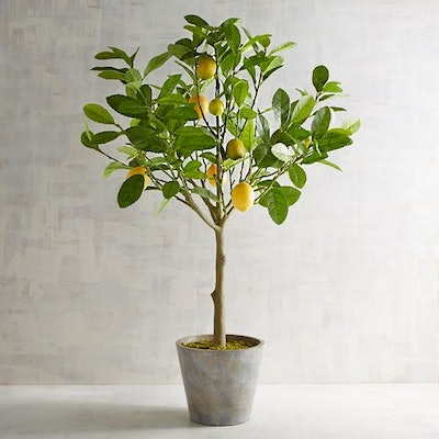3' Faux Lemon Tree