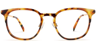 Jenkins in Canyon Tortoise with Gold