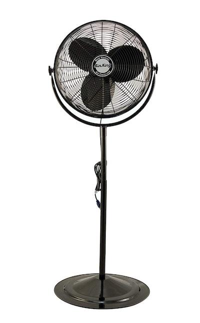 A Long-Lasting, Industrial-Strength Pedestal Fan