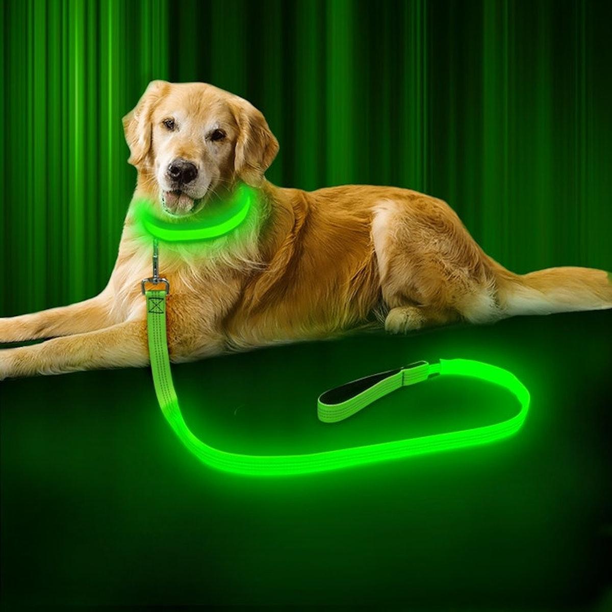 BSEEN LED Dog Leash