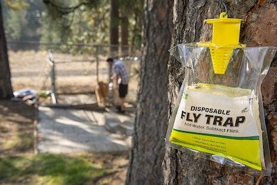 RESCUE Non-Toxic Fly Trap