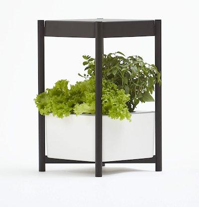 Miracle-Gro Twelve Indoor Growing System
