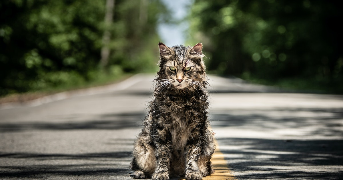 20 Creepiest Animals In Books, From 'Pet Sematary' To 'Harry Potter'