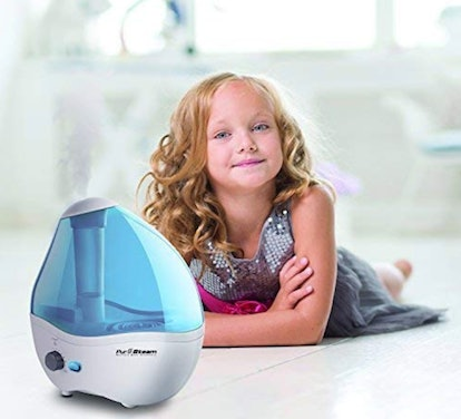 PurSteam World's Best Steamers Humidifier