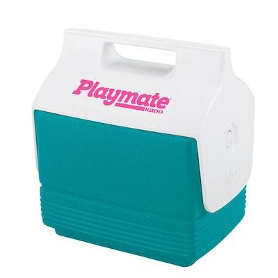 Retro Playmate Mini