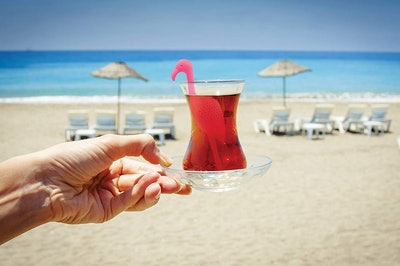 Tropic Tea Flamingo Tea Infuser
