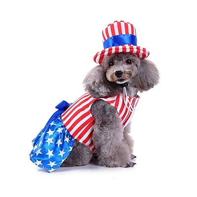 Dog Costume USA Flag Style