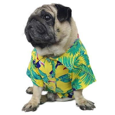 Hawaiian Dog Shirt